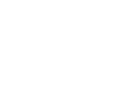 Horse & Buggy Brands